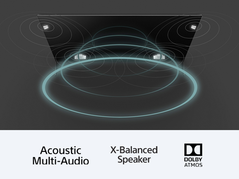 950H Acoustic Multi Audio